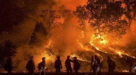 Ένας νεκρός και χιλιάδες εκτοπισμένοι λόγω δασικής πυργκαγιάς