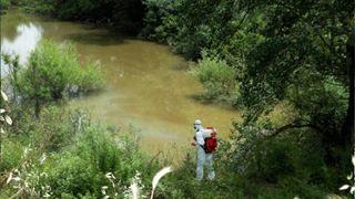 Ξεκινά την ερχόμενη εβδομάδα το πρόγραμμα καταπολέμησης κουνουπιών στην Κεντρική Μακεδονία
