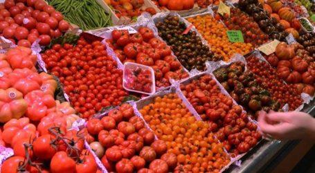 Κατάσχεση 2,8 τόνων ακατάλληλων φρούτων στην περιοχή του Ρέντη