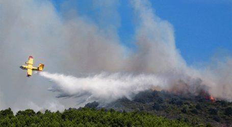 Το μπάρμπεκιου κατέληξε σε δασική πυρκαγιά και σε πρόστιμο… 27 εκατ. ευρώ