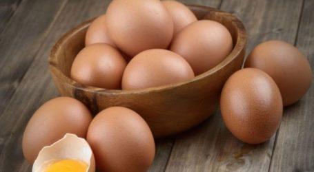 Δέσμευση 33.000 αυγών και 80 κιλών αλλαντικών στο λιμάνι του Πειραιά