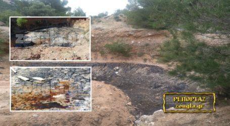 Με παρέμβαση Μπρέμπου και Zougla καθαρίζεται η τοξική λίμνη της Φυλής