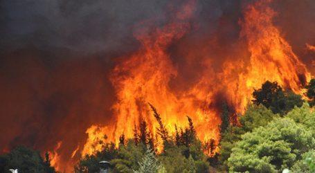 Πυρκαγιές στο Κερί και τον Άγιο Λέοντα