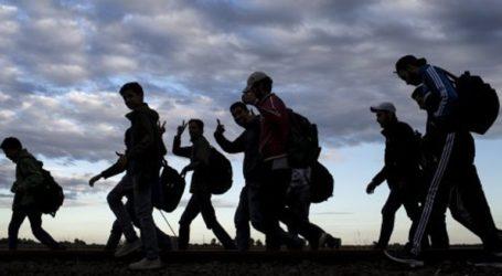 Επαναπατρίστηκαν από τη Γερμανία 32 Αφγανοί αιτούντες άσυλο
