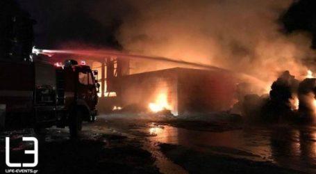 Υπό έλεγχο η πυρκαγιά στο εργοστάσιο ανακύκλωσης στη Σίνδο