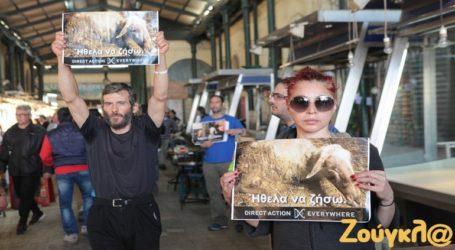 Ακτιβιστές βίγκαν επανήλθαν στη Βαρβάκειο και το Μεγάλο Σάββατο