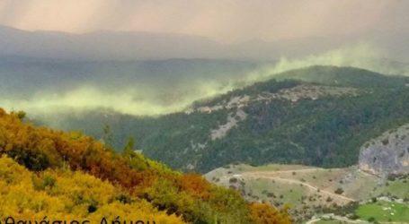 Το φαινόμενο του «Βόρειου Σέλας» στον ουρανό της Ελασσόνας – Εντυπωσιακές εικόνες
