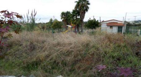 Συστάσεις από το Δήμο Λαρισαίων για τήρηση καθαριότητας οικοπέδων