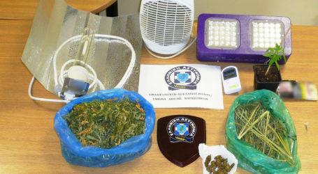 Συνελήφθη 40χρονος στο Βόλο για κατοχή ναρκωτικών