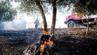 Νέα ΚΥΑ για τον συντονισμότης Πυροσβεστικής με τη Δασική Υπηρεσία