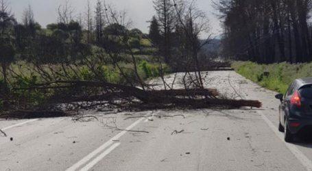 Σοβαρά προβλήματα από τους ισχυρούς ανέμους στην Κρήτη
