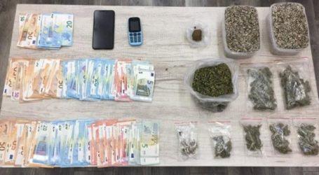 Συλλήψεις για κάνναβη και παραισθησιογόνα μανιτάρια