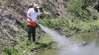Εκτεταμένο πρόγραμμα καταπολέμησης των κουνουπιών στο Ρέθυμνο