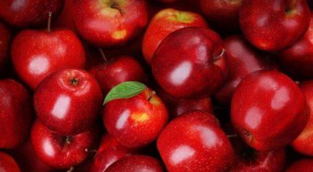 Δέσμευση 1.558 κιλών μήλων σε επιχείρηση στου Ρέντη