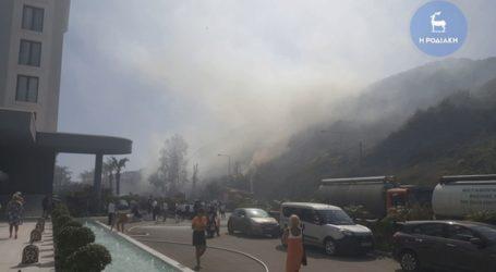 Πυρκαγιά σε δασική έκταση στο Φαληράκι