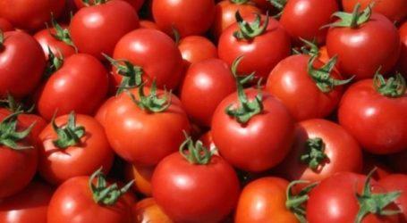 Δεσμεύτηκε μεγάλη ποσότητα ντομάτας στον Πειραιά