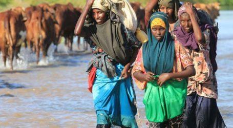 Νέα ανθρωπιστική κρίση απειλεί τη Σομαλία