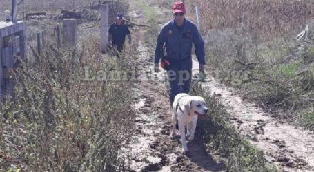 Σκύλος της ΕΜΑΚ εντόπισε 80χρονο που είχε εξαφανιστεί