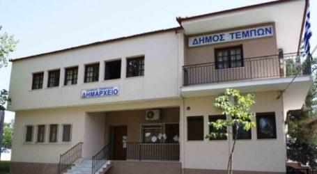 Άμεση η αντίδραση του Δήμου Τεμπών για τις προσβολές από τη σφήκα της καστανιάς