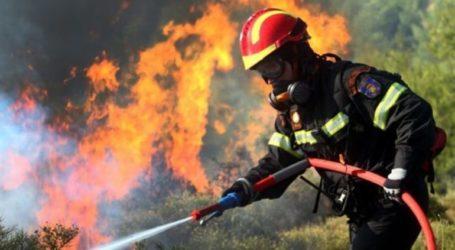 Συνεδριάζει το Συντονιστικό όργανο για τις πυρκαγιές στη Μαγνησία