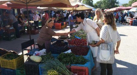 Μαρία Γαλλιού: Η ανάπτυξη του νομού Λάρισας προϋποθέτει ανάπτυξη των παραλίων του