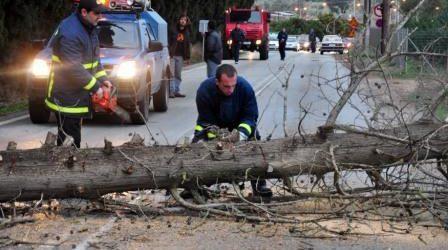 Ξερίζωσε δέντρο και προκάλεσε δύο εστίες φωτιάς η κακοκαιρία στη Λάρισα