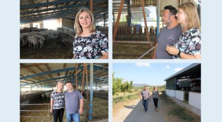 Επίσκεψη της Ζέττας Μακρή στην Κτηνοτροφική μονάδα του Αντιπροέδρου Ομοσπονδίας κ. Τόπα.