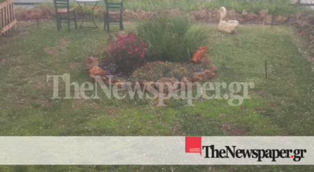 ΤΩΡΑ: Έντονη χαλαζόπτωση σε περιοχές της Μαγνησίας [εικόνες και βίντεο]