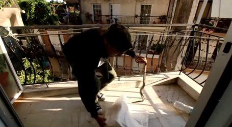 Βόλος: Φίδι έκανε… βόλτα σε μπαλκόνι πολυκατοικίας