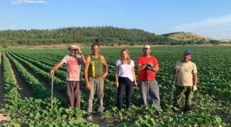 Στέλλα Μπίζιου: Στις 7 Ιουλίου επιλέγουμε το δρόμο της αλήθειας και της ευθύνης