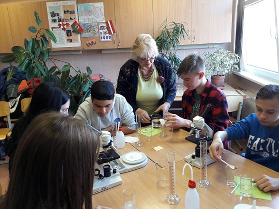 Το Γυμνάσιο Πλατυκάμπου στη Βαλτική (φωτο)