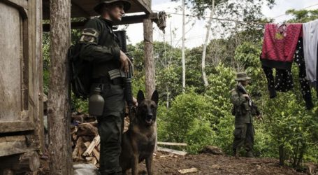 Οι Aρχές των δύο χωρών κατέσχεσαν σχεδόν 680 κιλά κοκαΐνη