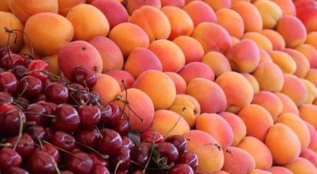 Δέσμευση 2,6 τόνων φρούτων σε επιχείρηση στου Ρέντη