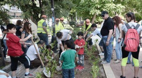 Προσφυγόπουλα και παιδιά με αναπηρία πρασίνισαν τον δήμο Νεάπολης-Συκεών