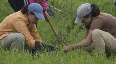 Αν δεν φυτέψεις 10 δέντρα… δεν παίρνεις απολυτήριο!