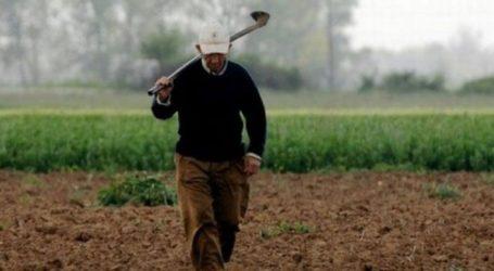 Ρύθμιση για το πρόβλημα με τους δασωμένους αγρούς