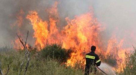 Δύο πυρκαγιές σε εξέλιξη στην περιοχή της Λάρισας