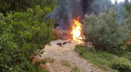 Δημοπράτηση για εγκατάσταση συστήματος πυρανίχνευσης στο δάσος Δαδιάς-Λευκίμης