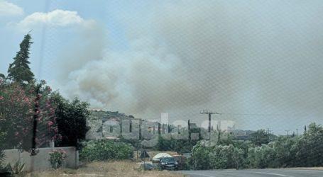 Μεγάλη πυρκαγιά στο Λαγονήσι – Εκκενώνονται κατοικίες