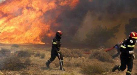 Φωτιά στο Λαύριο – Απομακρύνουν μετανάστες από καταυλισμό