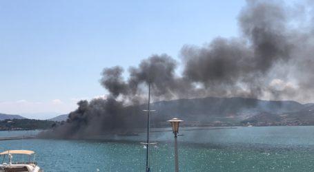 ΤΩΡΑ: Φωτιά σε σκάφος στην παραλία του Βόλου [αποκλειστικές εικόνες]