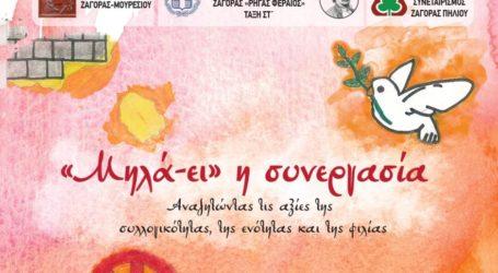 ZAGORIN: Επενδύοντας σταθερά στη νέα γενιά…