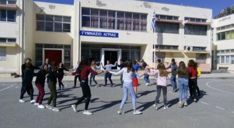 Το Γυμνάσιο Αγριάς βραβεύτηκε από το «Χαμόγελο του παιδιού»