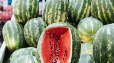 Πρόστιμο 200 ευρώ σε μικροπωλητή που πουλούσε καρπούζια στον Βόλο