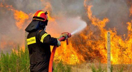 Δάμασαν τις φλόγες της φωτιάς στα Βούναινα οι Πυροσβέστες