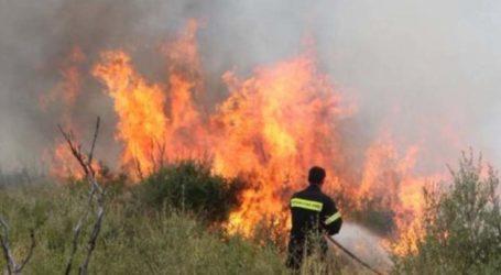 Δύο φωτιές σε εξέλιξη στη Λάρισα – Η μία σε επιχείρηση έξω από την πόλη
