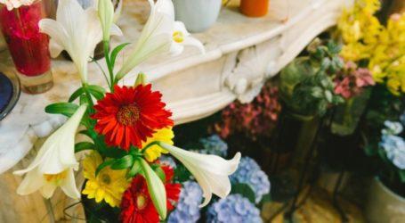 «Τσουχτερό» πρόστιμο σε πλανόδιο που πουλούσε φυτά στο κέντρο του Βόλου