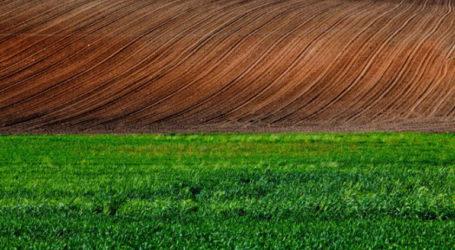 Μέχρι 25 Ιουνίου οι αιτήσεις για το πρόγραμμα «Ανάπτυξη μικρών γεωργικών εκμεταλλεύσεων»