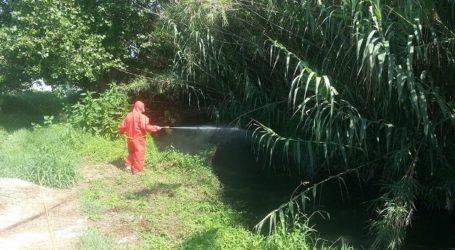 Πρόγραμμα κουνουποκτονίας σε Βόλο και υπόλοιπη Μαγνησία