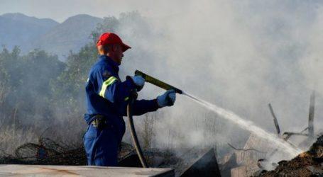 Πυρκαγιά σε εκκοκκιστήριο στα Φάρσαλα – Στις φλόγες σοροί βαμβακιού